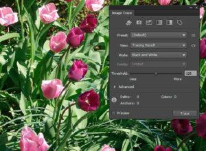 Adobe Illustrator CS6 Advanced